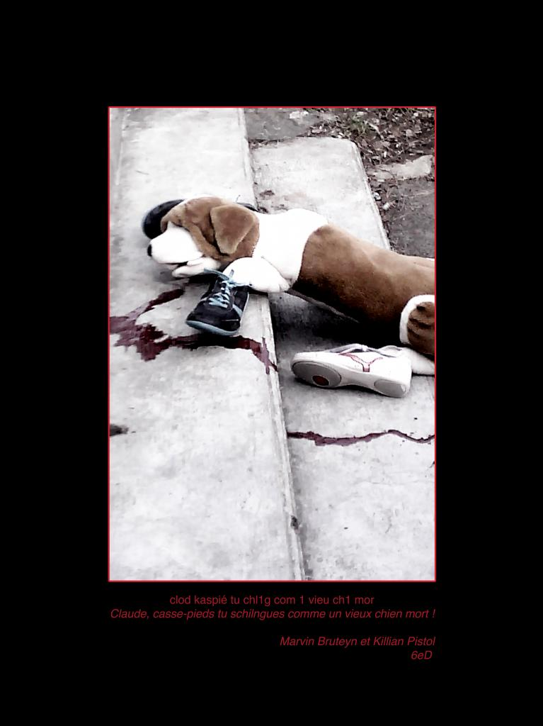 chien mort