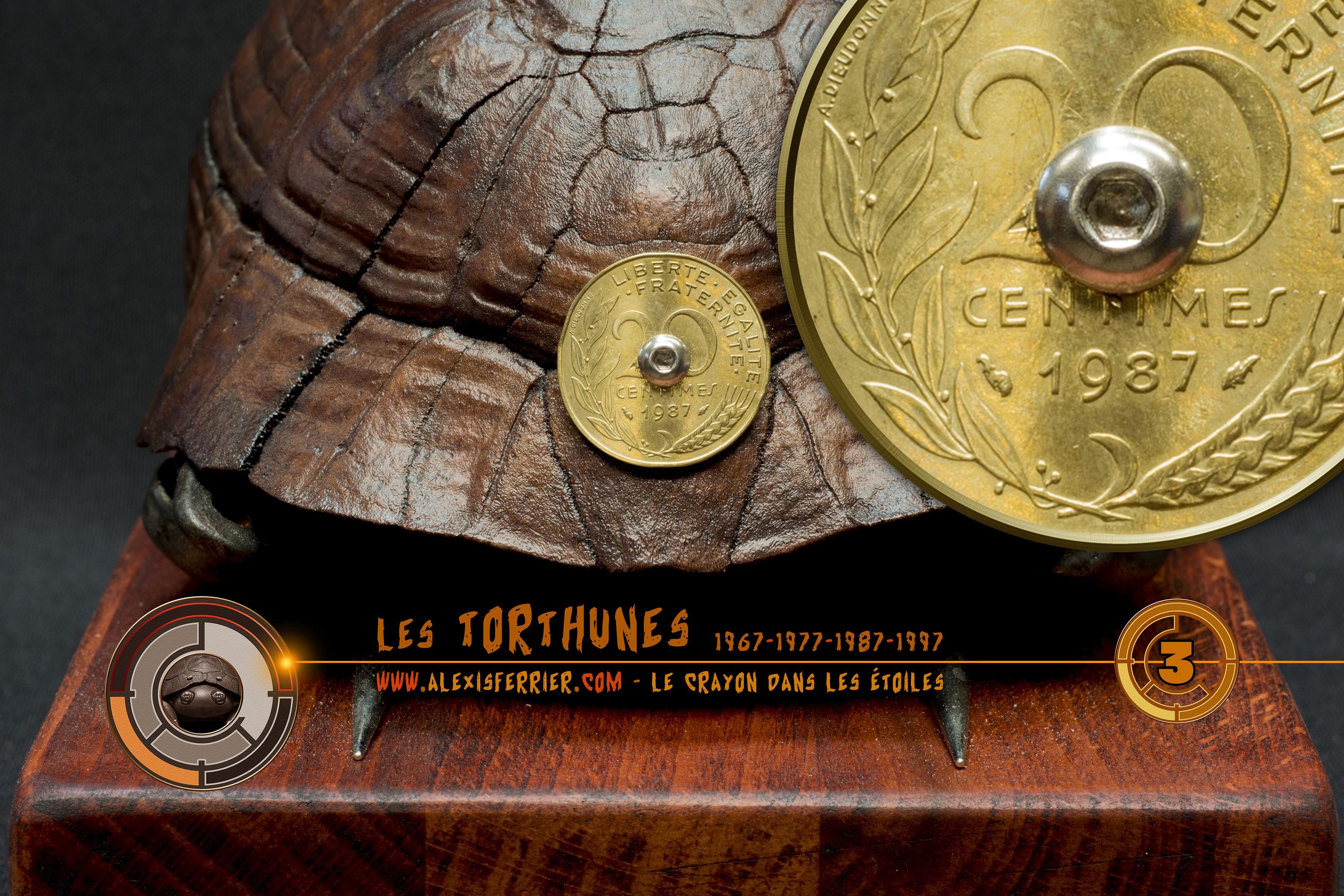 Tortune 3d piece