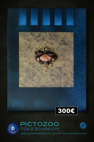 50x65 2p