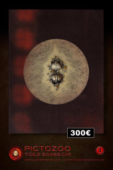 50x65 3p