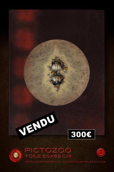 50x65 3p vendu