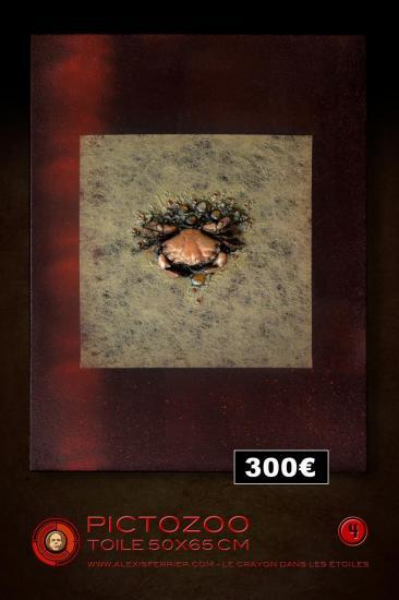 50x65 4p