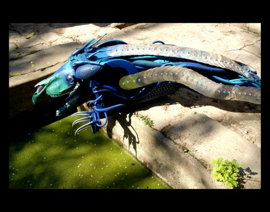 dragon-cm1-site.jpg